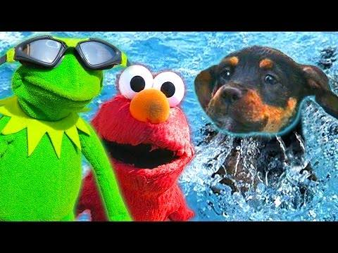 Kermit the Frog, Elmo, and Puppy go Swimming!
