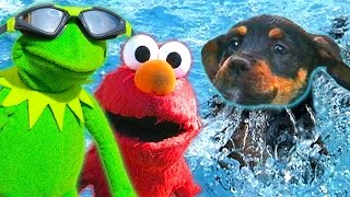 Kermit the Frog, Elmo, and Puppy go Swimming! thumbnail