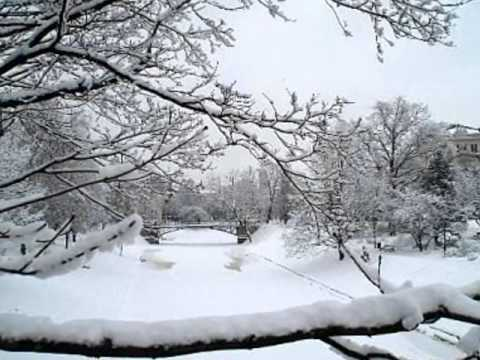 Doris Day ~~~ Let It Snow ! Let It Snow !