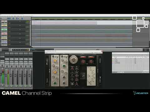 Acustica Audio Camel - Product Overview