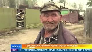 В регионах России бушуют природные пожары