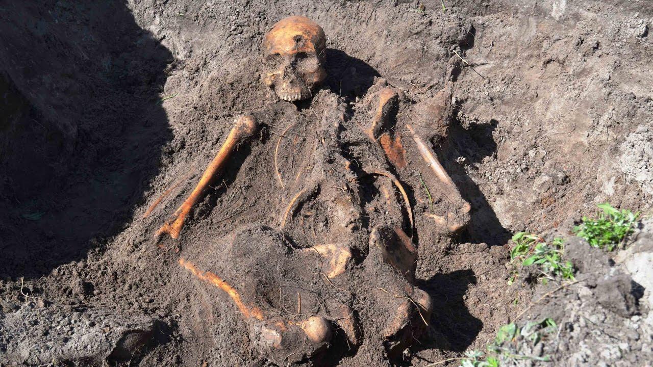 Раскопки в полях второй мировой войны фильм 31/excavation in.