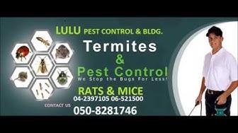 LULU PEST CONTROL 050 8281746