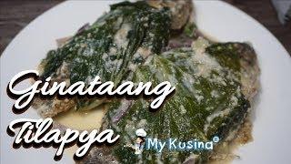 GINATAANG TILAPYA | My Kusina