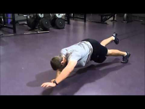plank position contralateral raise left arm right leg