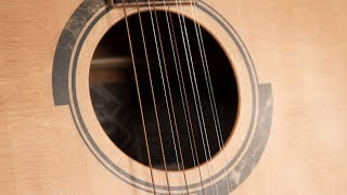 Michael Kelly Triad 10-String Acoustic-Electric | Quicklook