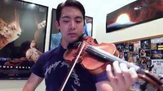 11 Lord of the Rings Themes on Violin
