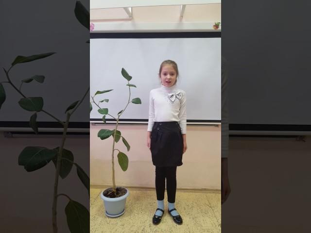 Изображение предпросмотра прочтения – ВалерияИванова читает произведение «Мартышка и очки» И.А.Крылова