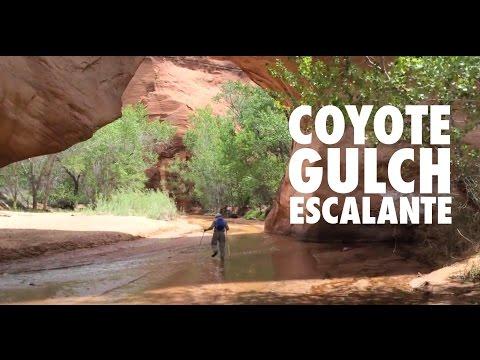 Coyote Gulch - Escalante, Utah - April 30-May 2, 2015