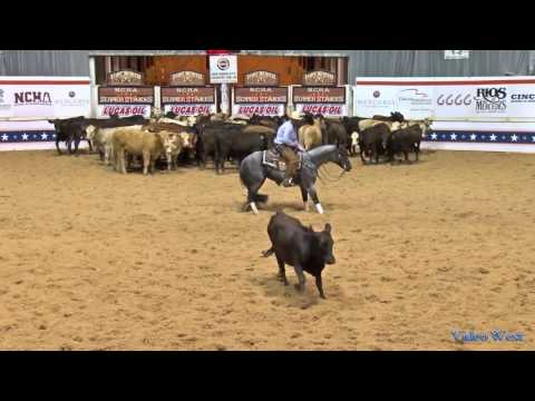 Hashtags and Tatum Rice  2017 NCHA Super Stakes Open Finals Champion