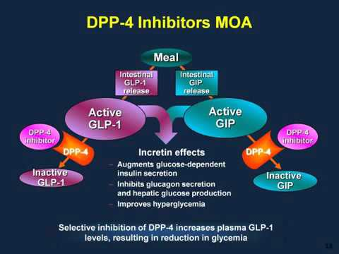 Type 2 Diabetes Treatment Novel Therapies GLP 1 Receptor Agonists Analogs and DPP 4 Inhibitors