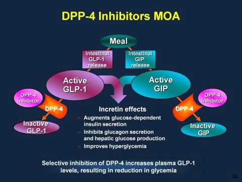 Type 2 Diabetes Treatment Novel Therapies GLP 1 Receptor Agonists