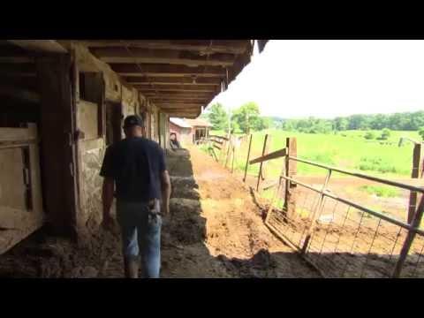Conewago Creek Story