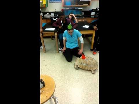 Owings Mills High School:Darwin Day