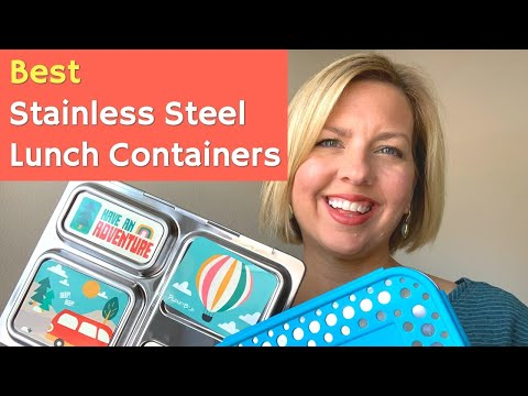 Best STAINLESS STEEL Lunch Containers | Non-Toxic Ways To Store Food | Dishwasher Safe