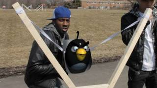 Real Life Angry Birds - Interactive (DeStorm)