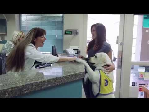 Welcome to Lake Forest Animal Clinic