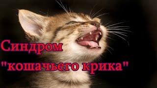 """Синдром """"кошачьего крика"""""""