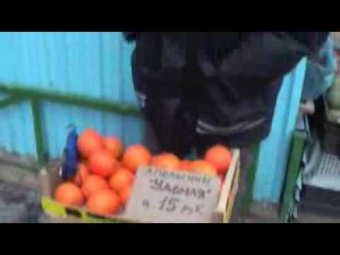 Солнце и апельсины — КиноПоиск