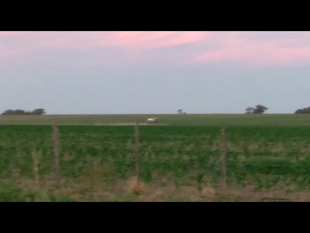 """Fumigaciones en un campo en """"zona gris"""""""