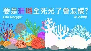 life noggin 要是珊瑚全死光了會怎樣 中文cc字幕