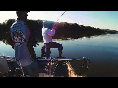 Рыбалка с гидом на Оке - #рыбалкаспилюковым