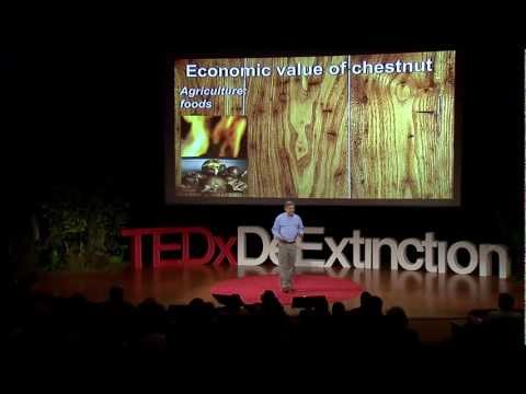 Reviving the American forest with the American chestnut: William Powell at TEDxDeExtinction