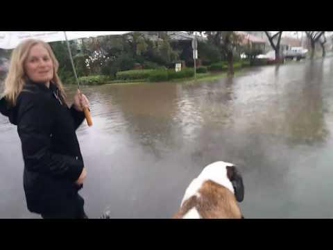 Long Beach Flooding