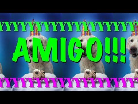 happy-birthday-amigo!---epic-happy-birthday-song