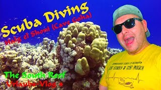 SCUBA DIVING EGYPT - Halg el Shoni (Cave Goha) Part 1/2 - The South Reef 2018