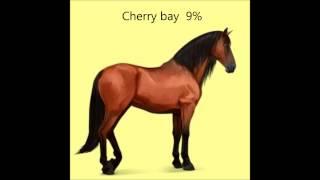 "Purebred Spanish Horses Coat Colors ""hawrse"""