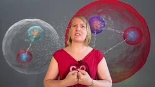 04D Was sind Quarks ?