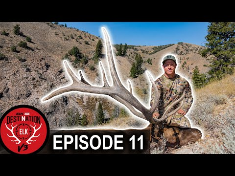 Hunt Winner Success in Utah! (Destination Elk V3 – Episode 11)