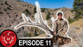 Hunt Winner Success in Utah! (Destination Elk V3 - Episode 11)