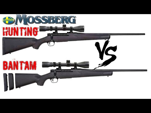 THE BEST FEATURE PACKED BUDGET HUNTING RIFLES ON THE MARKET TODAY