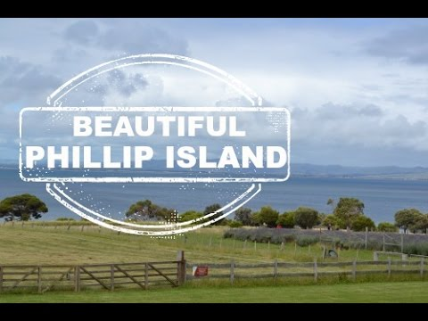 Travel tips for Phillip Island, VIC