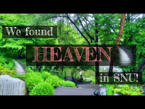 HEAVEN in Seoul National University? Impressive nature with peaceful rain (lake, jungle, ...)