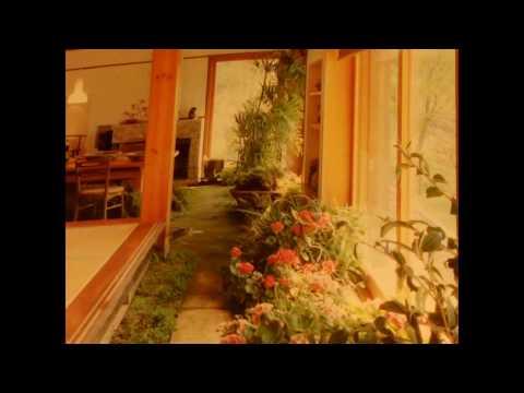 ASMR: décoration de votre maison selon les principes du Feng Shui REUPLOAD