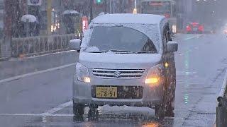 Токио: первый за 54 года снег в ноябре (новости)