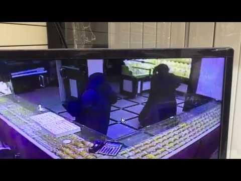 """فيديو يوثّق لحظات تنفيذ جريمة """"سطو مجوهرات ضباء"""""""