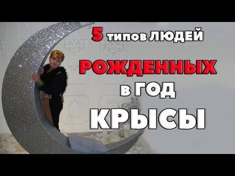 5 ТИПОВ КРЫС. ДЕРЕВЯННАЯ КРЫСА, ОГНЕННАЯ КРЫСА