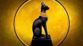 Museo Egizio di Torino: La mummia gatto, I gatti mummificati, Il culto del gatto