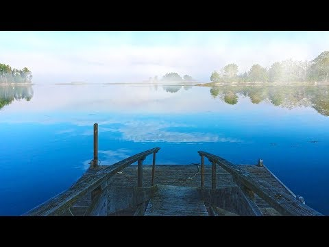 Relax Fast with Soothing Water Sounds by Dock | Nature White Noise 10 Hours
