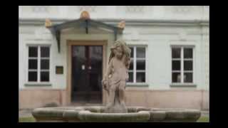видео Университет политических и социальных наук в Чехии