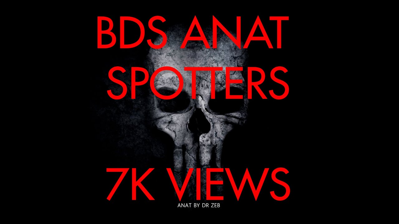 BDS .ANATOMY SPOTTERS 03 - YouTube