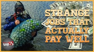 Top 7 Strange Jobs That Actually Pay Well