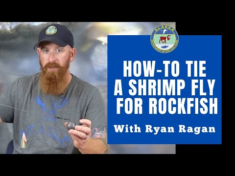Tying A Shrimp Fly For Rockfish