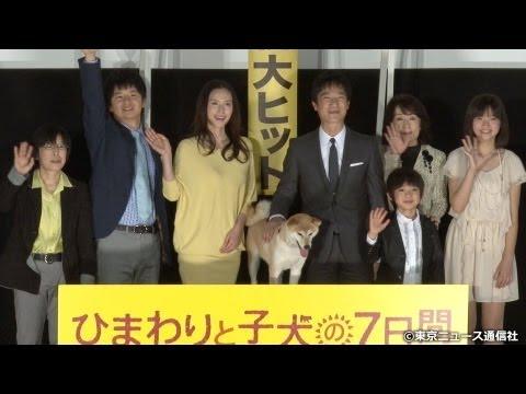 芸能情報はインターネットTVガイド(http://www.tvguide.or.jp/)で!】 映画「ひまわりと子犬の7日間」の初日舞台あいさつが東京・新宿で行われ、...