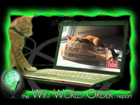 Wiki Word Order Music: The Word Is Cybersecurity (Music/Cat Video)