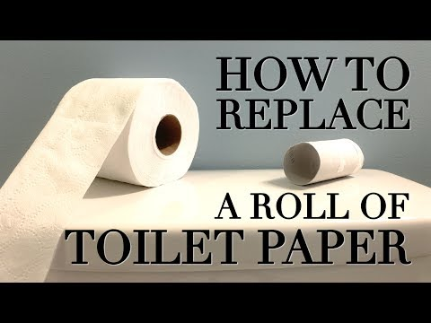 How to Replace a FREAKING Roll of Toilet Paper the Right Way!!!